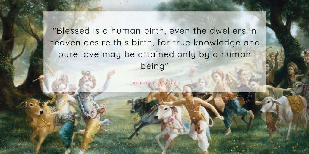 Pure Love - Krishna
