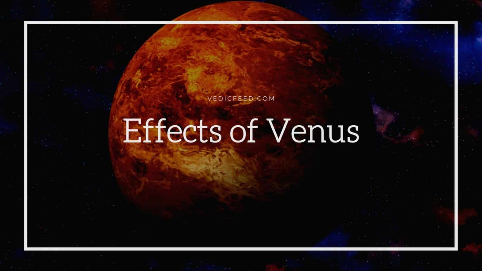 Effects of Venus in 12 Houses